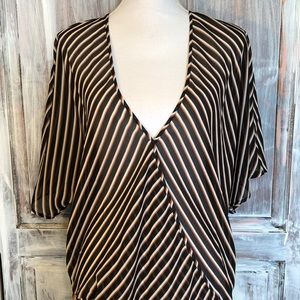 Coldwater Creek Dropwaist Striped Tunic Blouse.